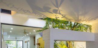 Kết cấu đặc biệt giúp ngôi nhà luôn tràn ngập ánh sáng và mang cả cây xanh vào mỗi gian phòng
