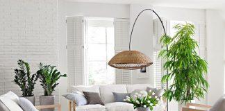 cây xanh cho phòng khách giúp hợp phong thủy