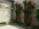 Thiết kế sân vườn sau cho nhà ống